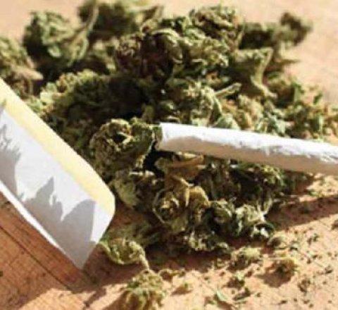 Marijuana in Malta
